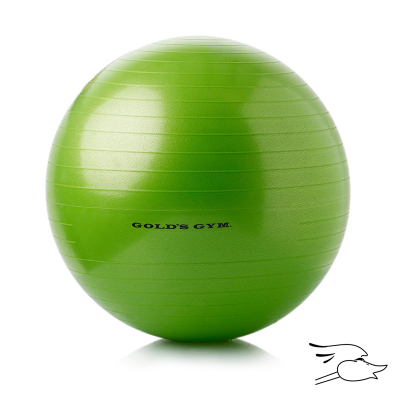 PELOTA PILATES GOLD GYM 55CM