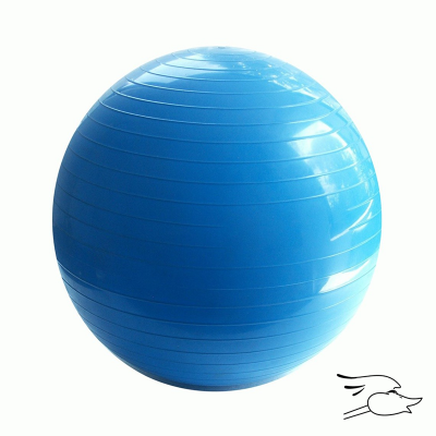 PELOTA PILATES GOLD´S GYM 65CM