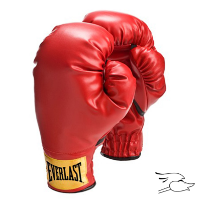GUANTES BOXEO EVERLAST LARGE