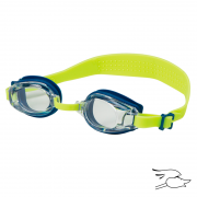 GAFA LEADER ANGELFISH CLEAR-BLUE-LIME GREEN