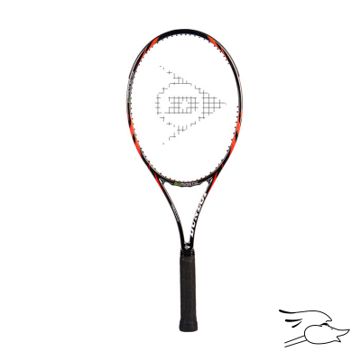 RAQUETA DUNLOP TENNIS BIOMIMETIC 300 TOUR 4 5/8